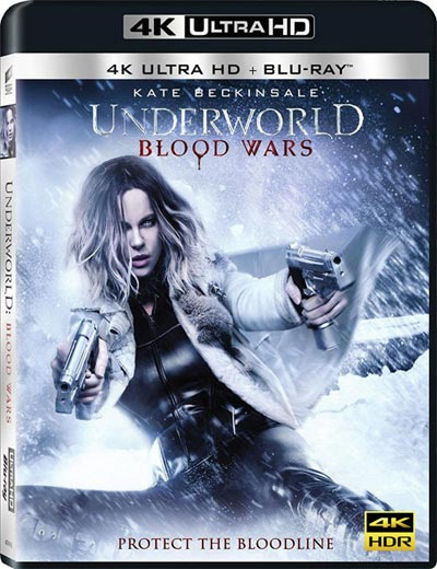 Underworld: Blood Wars 2016 4K HDR