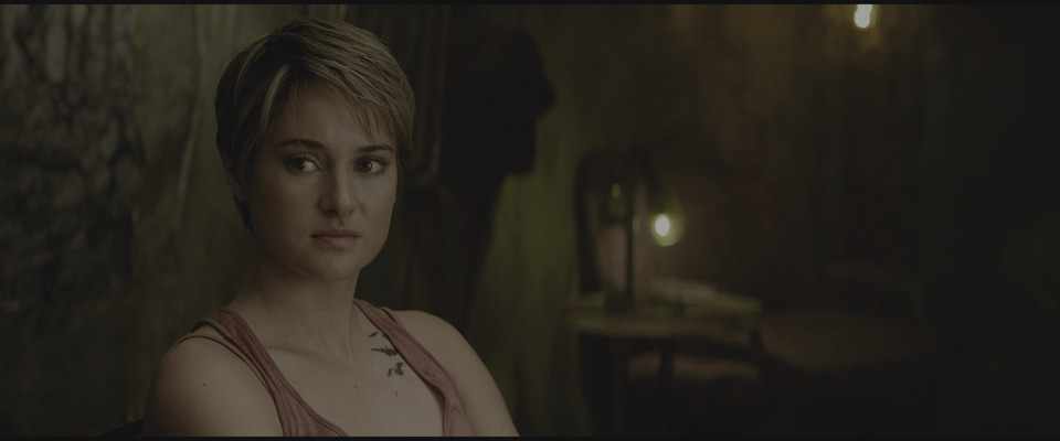 Insurgent 4K 2015 HDR X265 rip Ultra HD » Download RIPS Movies 4K HDR