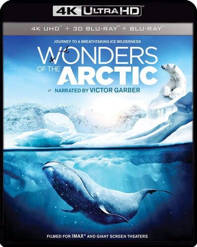 Wonders of the Arctic 4K RIP 2014 DOCU Ultra HD 2160p