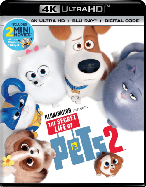 The Secret Life of Pets 2 4K 2019 Ultra HD